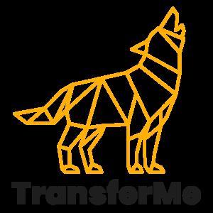 TransferMe Logo